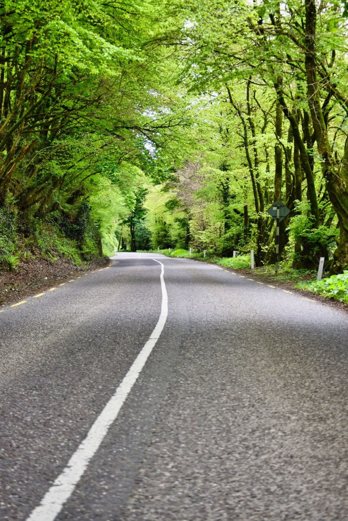 This image has an empty alt attribute; its file name is ballea-road-1.jpg